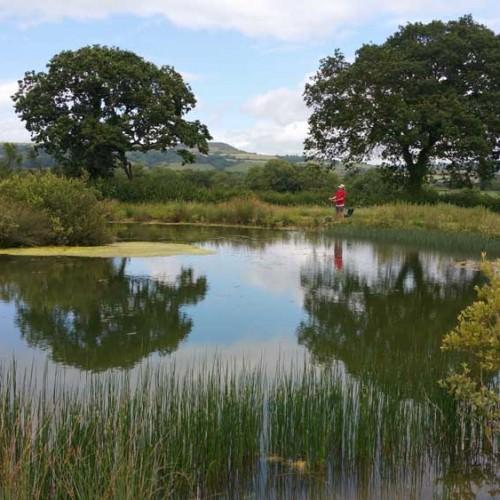 Fishing-pond