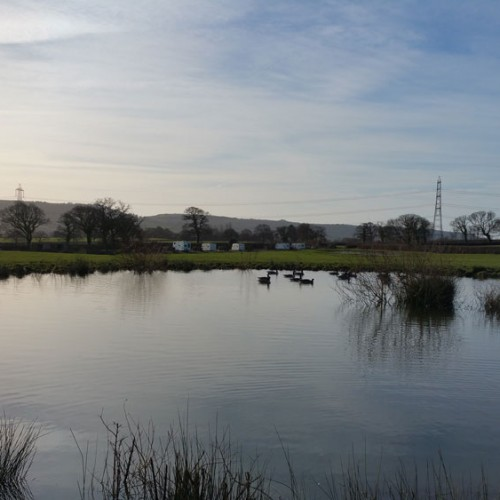 View from pond to site