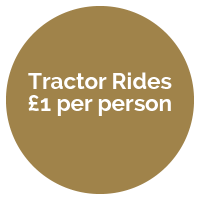 Tractor-rides-roundel