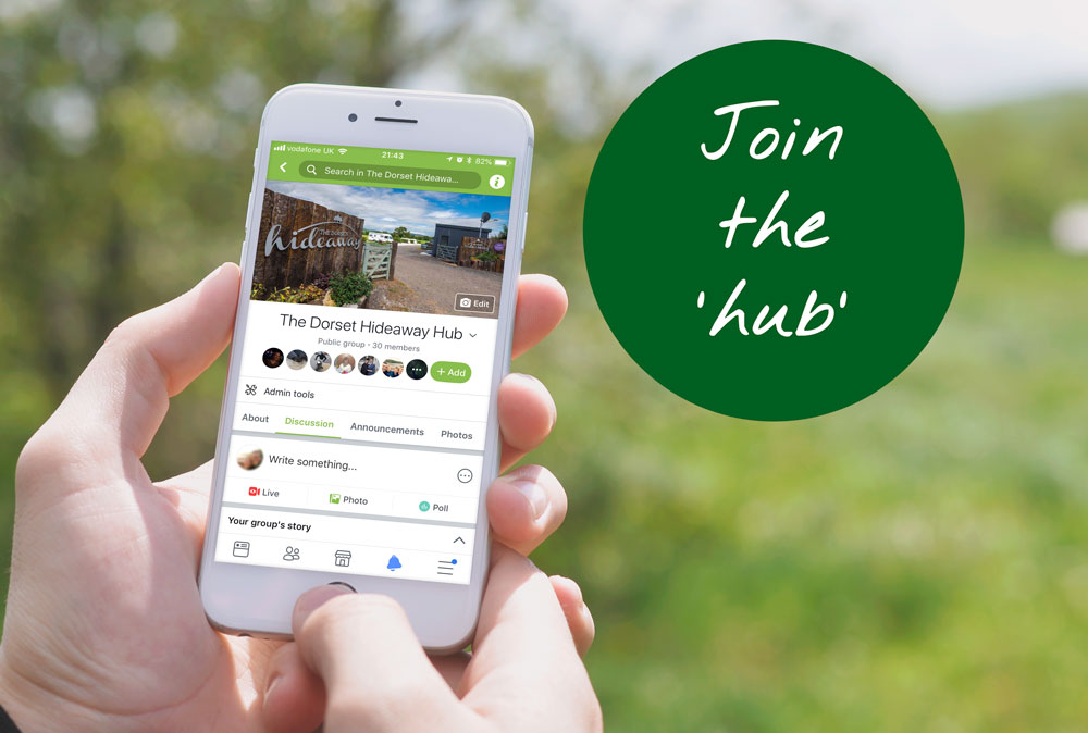 The Dorset Hideaway Hub