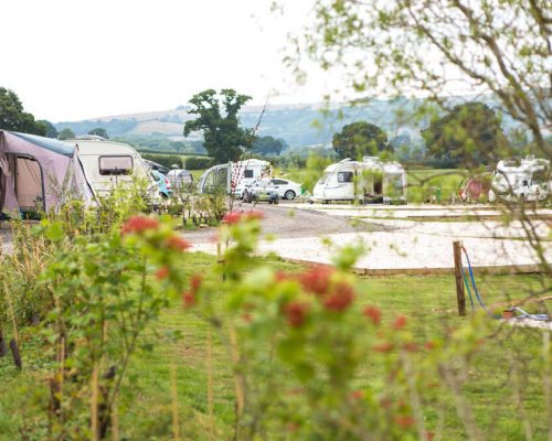 Dorset-hideaway-relaxing-seasonal-pitches