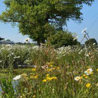 Dorset-Hideaway-Spa-Garden